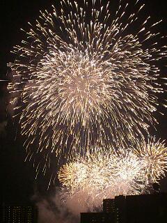 大田区平和都市宣言記念事業「花火の祭典」