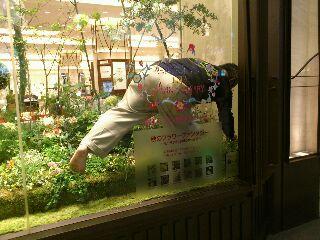 うめだ阪急ショーウィンドウ p<br />  art2