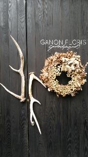GANON FLORIST